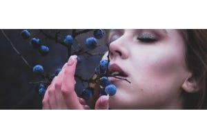 Ribes nigrum: pronkstuk onder de bessen