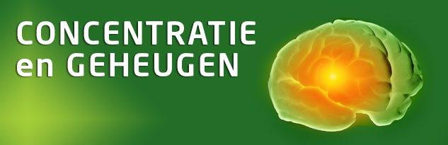 Concentratie & Geheugen