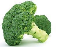 Broccoli poeder