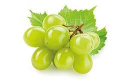 Druivenpit olie