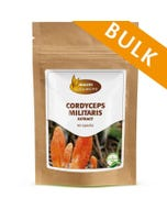 Cordyceps militaris - 240 capsules - Bulk