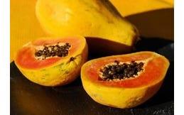 Papaja enzymen