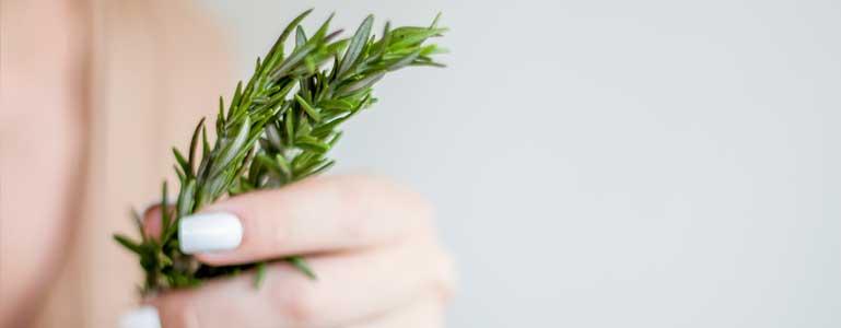 Terpenen voor een ultieme geur en smaak