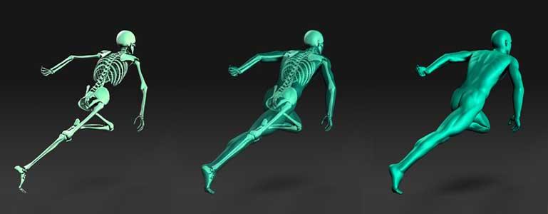 Geef u botten krachtvoer!