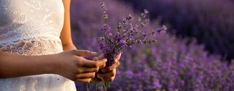 Welke nuttige stoffen vinden we in planten en kruiden?