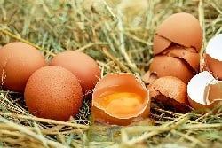 Ook eieren bevatten van nature stearinezuur