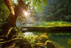 De mooie natuur