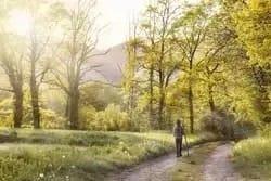 Lente wandeling