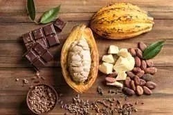 Superfoods: cacao en chocolade