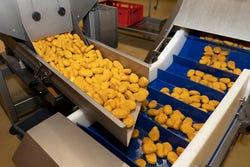 Commerciële voedselproductie