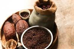 cacaoboon en pure cacao
