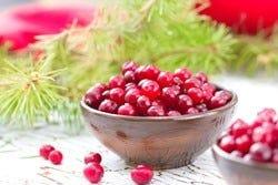 schaaltje met cranberries
