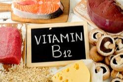 alleen dierlijke voedingsmiddelen bevatten vitamine B12