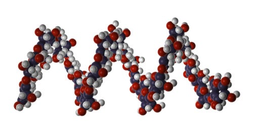 structuur polysacariden