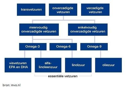 Tabel met verschillende vetzuren