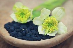 Zwarte komijnzaad wordt in diverse gerechten gebruikt