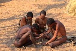 Bosjesmannen gebruiken ook duivelsklauw
