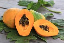 Rijpe papaja vrucht