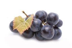 Resveratrol ook in de schil van rode druiven