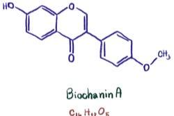 Biochanine