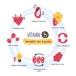 Functies van vitamine B3
