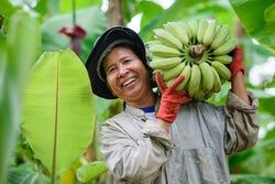 Vrolijke vrouw met gezonde tros bananen